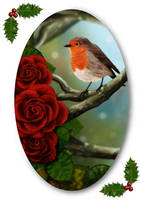 Robin Card by para-vine