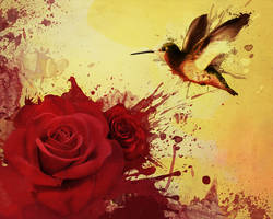 Hummingbird Rose by para-vine