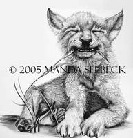 Wolf Cub by Yuukake