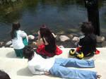 Pond Break
