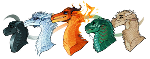 The Other Dragonets