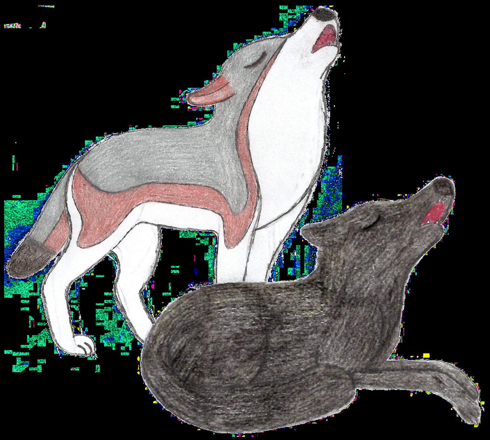 Canis Lupus Pambasileus By Rainforestwolf On Deviantart