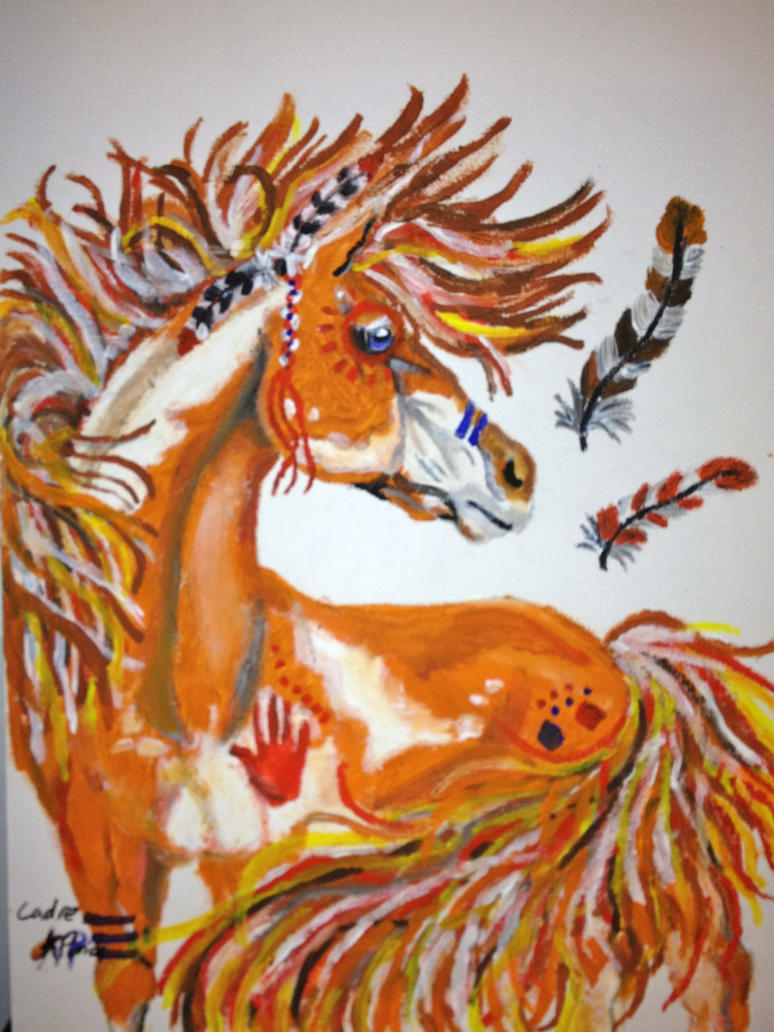 Indian paint horse by kbp415 on deviantart indian paint horse by kbp415 biocorpaavc Choice Image