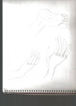 Hands and Feet Study 2