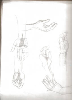 Hands and Feet Study 3