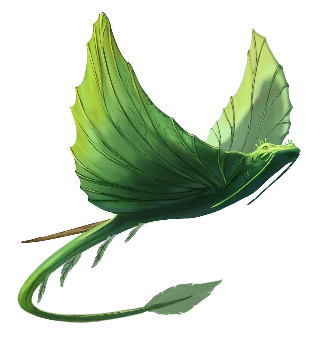 Leaf Ray