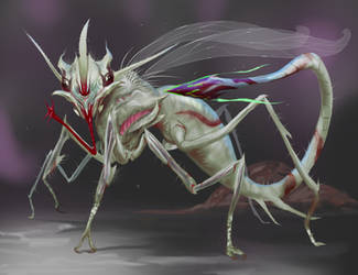 Spear Fly