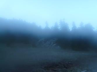 woods of parnassos