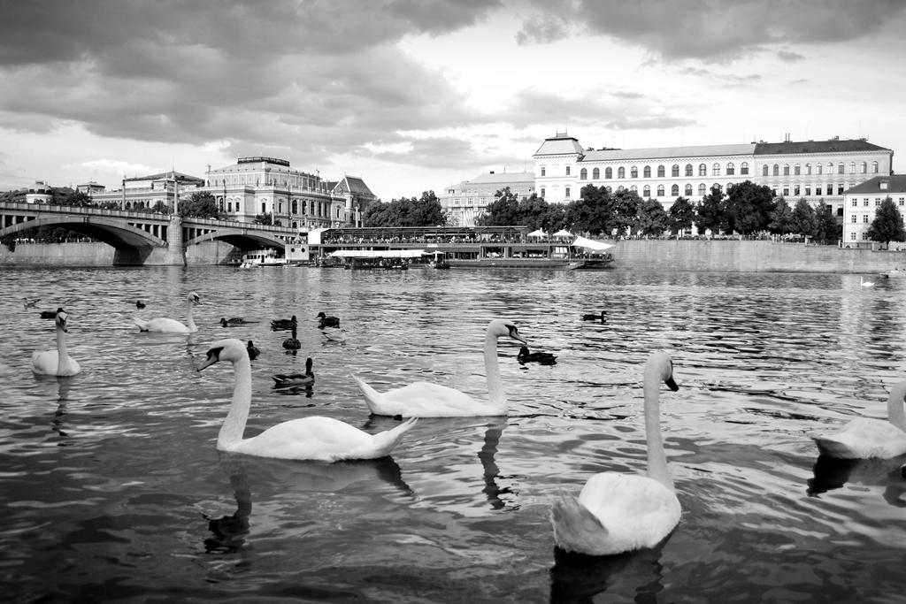 Praha by BuzzAstral
