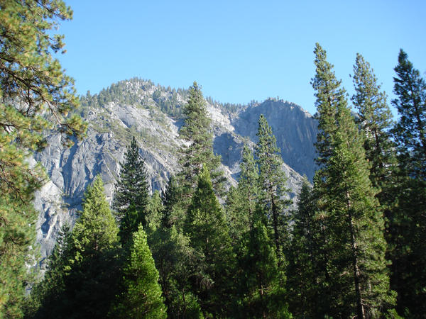 Yosemite National Park, CA 3 by almostexpelled
