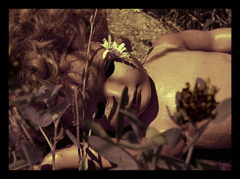 Dead dolls: Sleep Tight