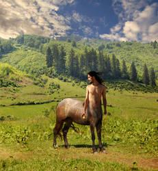 Centaur by citrina