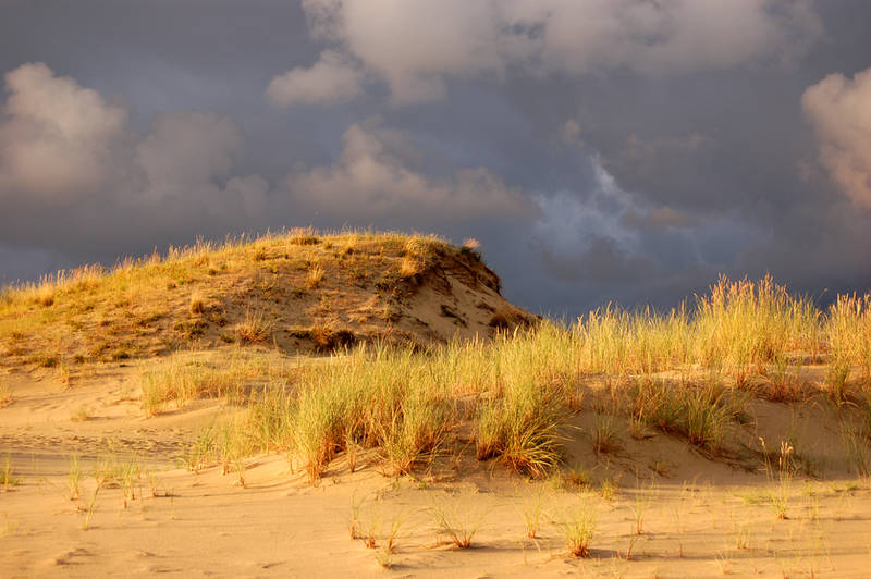 Dramatic Dunes by citrina