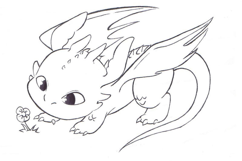 How train your dragon by foxi14 on deviantart for Toothless dragon coloring pages