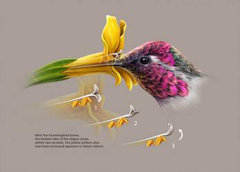 Peculiar pollination