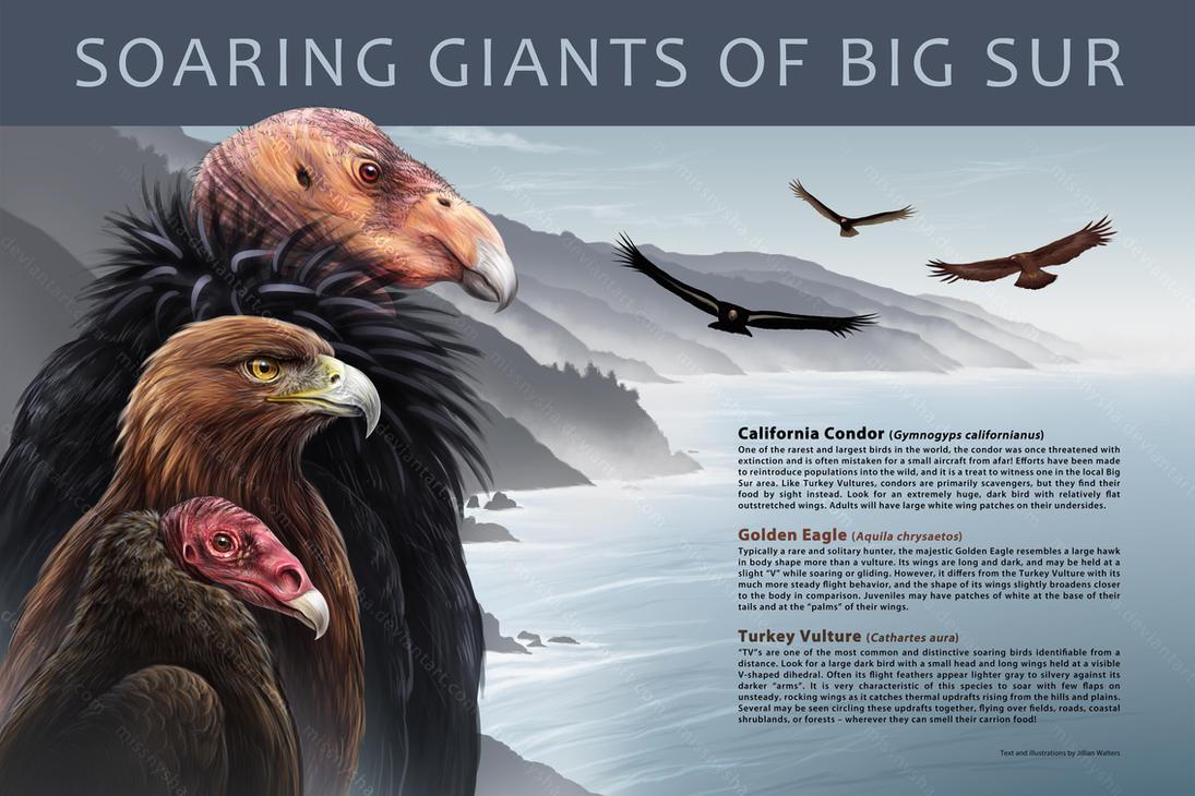 Soaring Giants by MissNysha