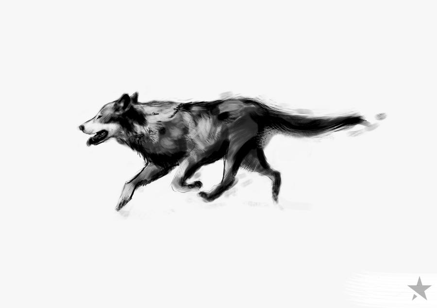 Wolf Tattoo Sketch Wolf Sketch by Outstarwalker