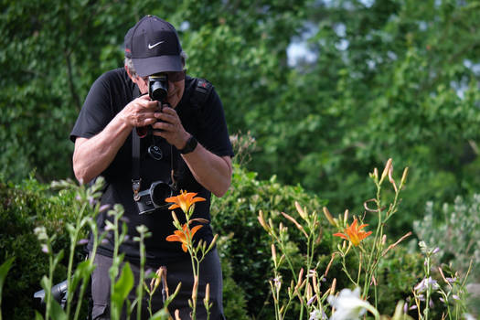 Getting the Right Exposure