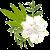 Ava Lily Lily2 by LilydeWakabayashi