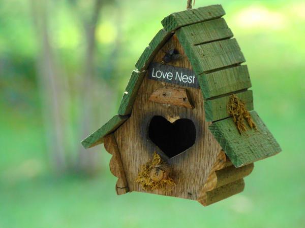 Love Nest by GramMoo