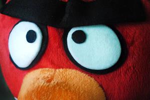 angry bird by xeane21