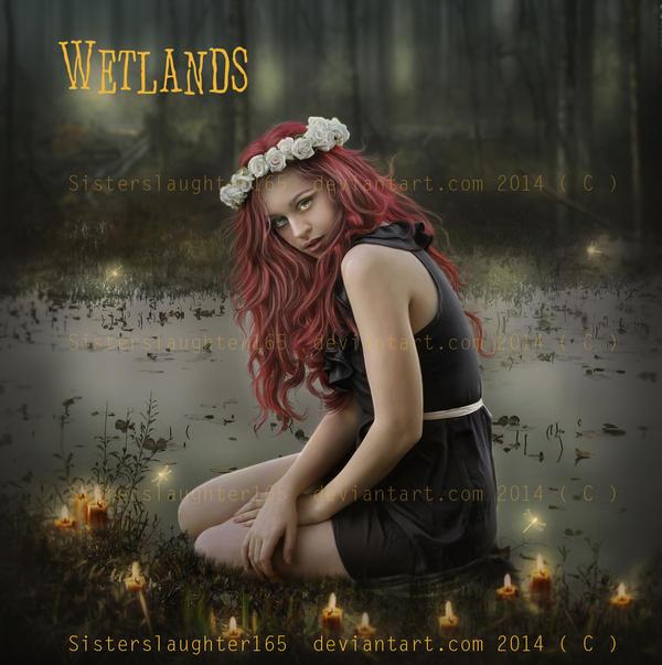 Wetlands by Sisterslaughter165
