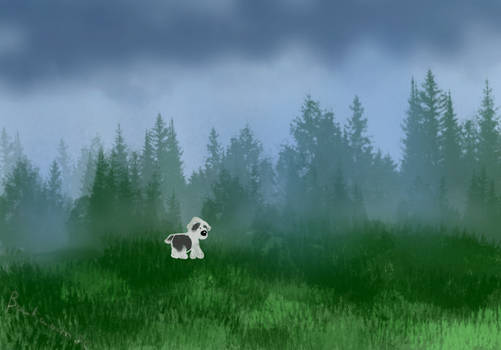 Taking Cover Outdoors in a Misty Forest - Day 18