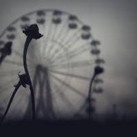 circus by TheLastOfDays