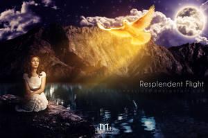 Resplendent Flight by LaercioMessias