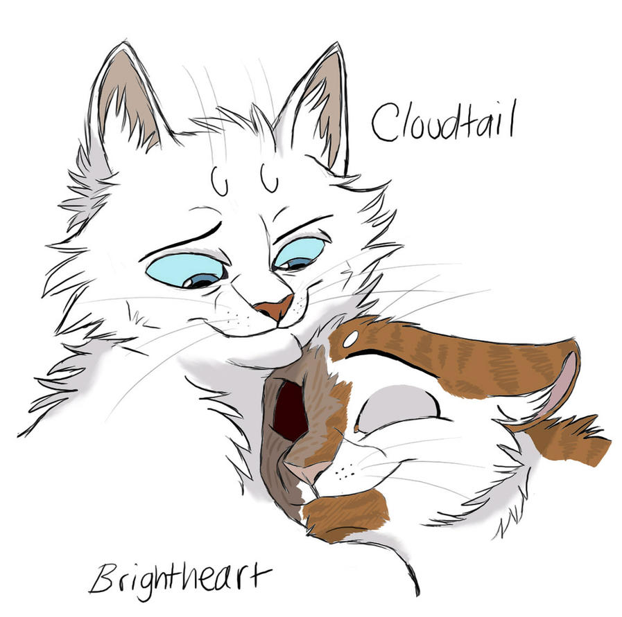 A Big Strong Warrior - CxB by Graystripe64 on DeviantArt Warrior Cat Drawings