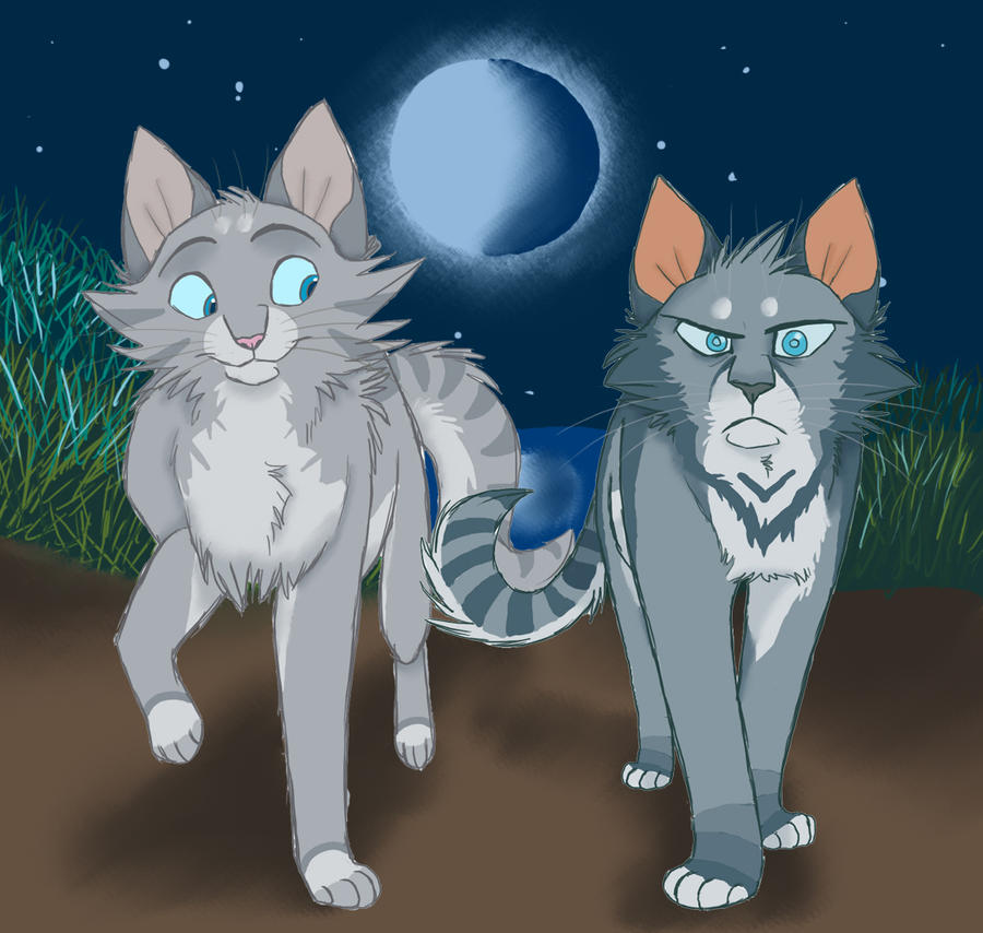 Jayfeather and halfmoon warrior cats
