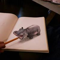 Hippo by RamonBruin