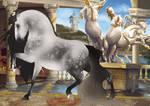 Caesar Import 53