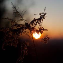 A Sunset. by rachapunk