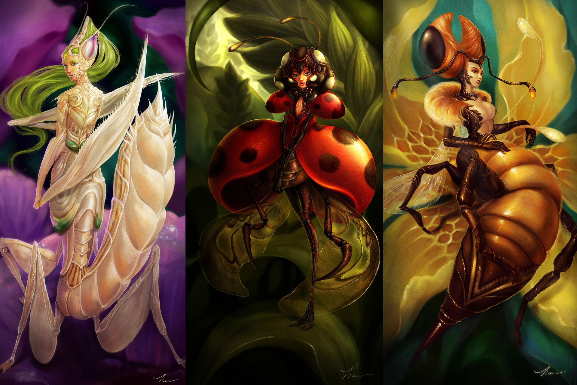 wallpaper - insect beauty collection I by yangtianli