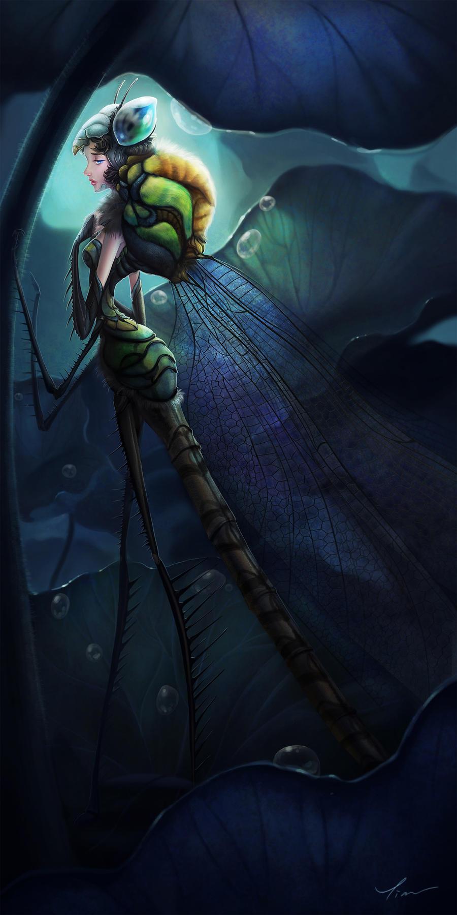 Dragonfly by yangtianli