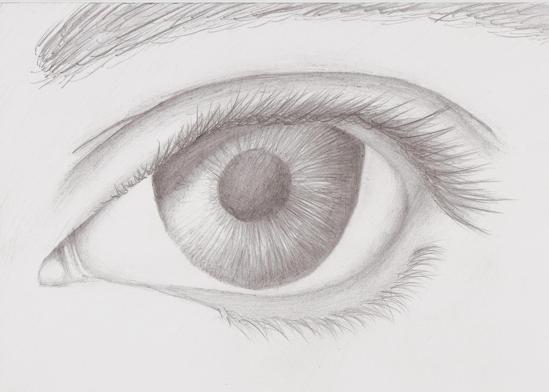 Mark crilley realism eye attempt by foreverstrawberries on deviantart mark crilley realism eye attempt by foreverstrawberries mark crilley realism eye attempt by foreverstrawberries ccuart Image collections