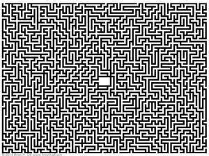Maze 2016 11 04