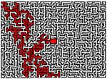 Maze 2016 11 04, solution