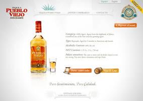pueblo viejo webdesign 2 by diego64