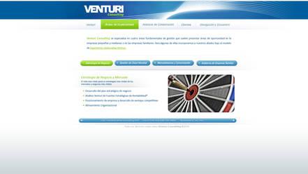 ventury consulting webdesign 2