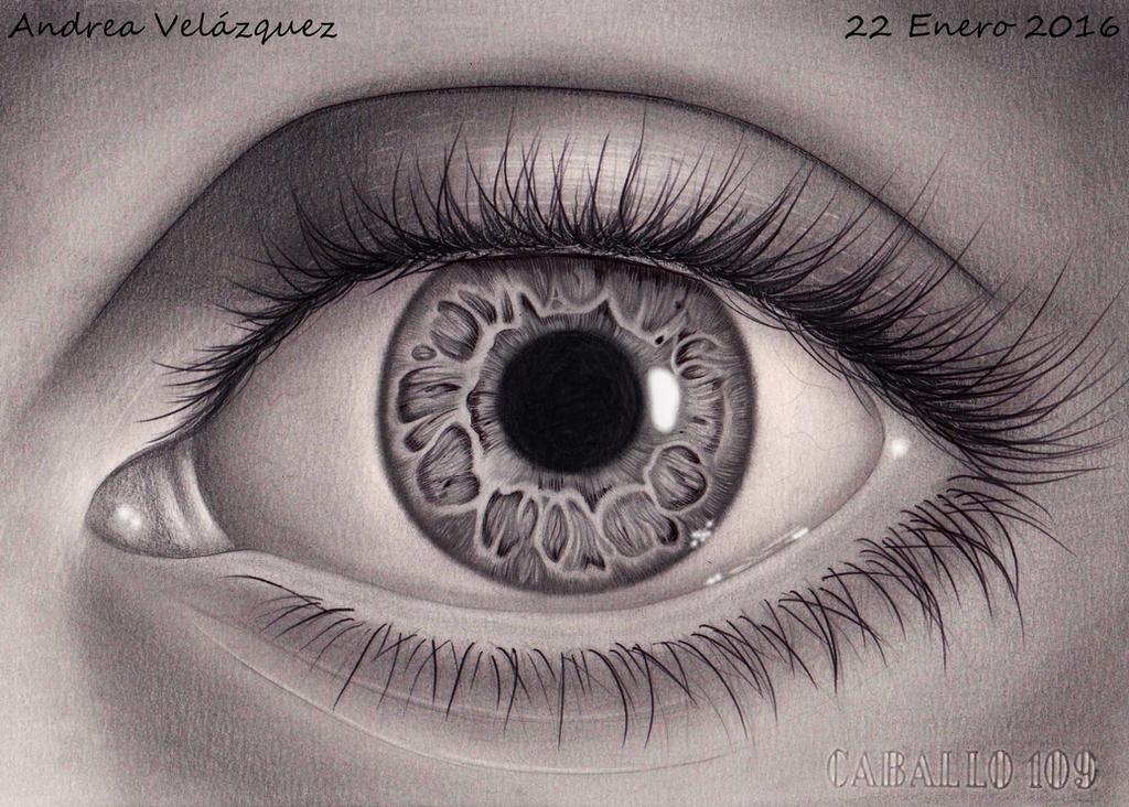 El ojo.