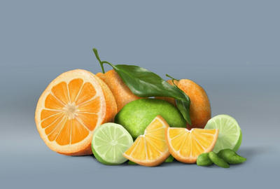 Citrus by Expressowl