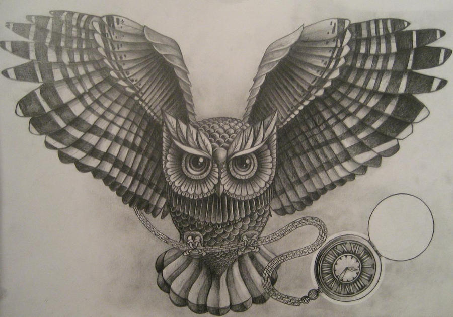 Owl by A-P-T
