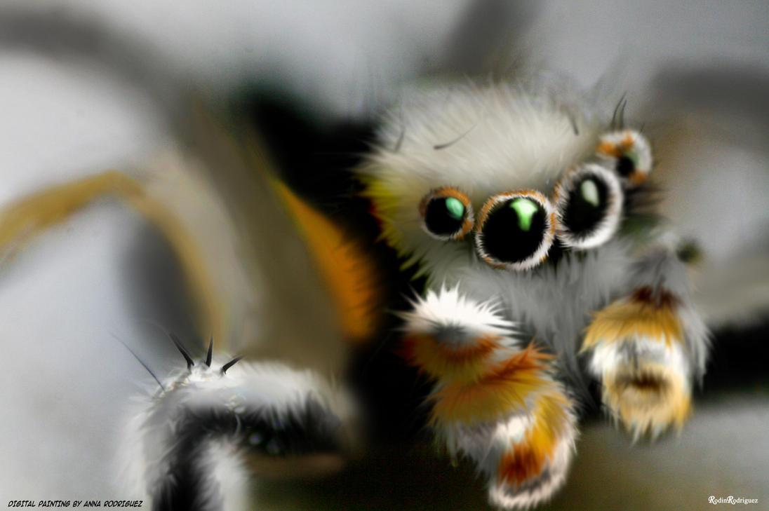 Cutest Eyes Ever By Py Bun On Deviantart