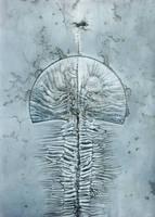 Ostium by PeteHamilton