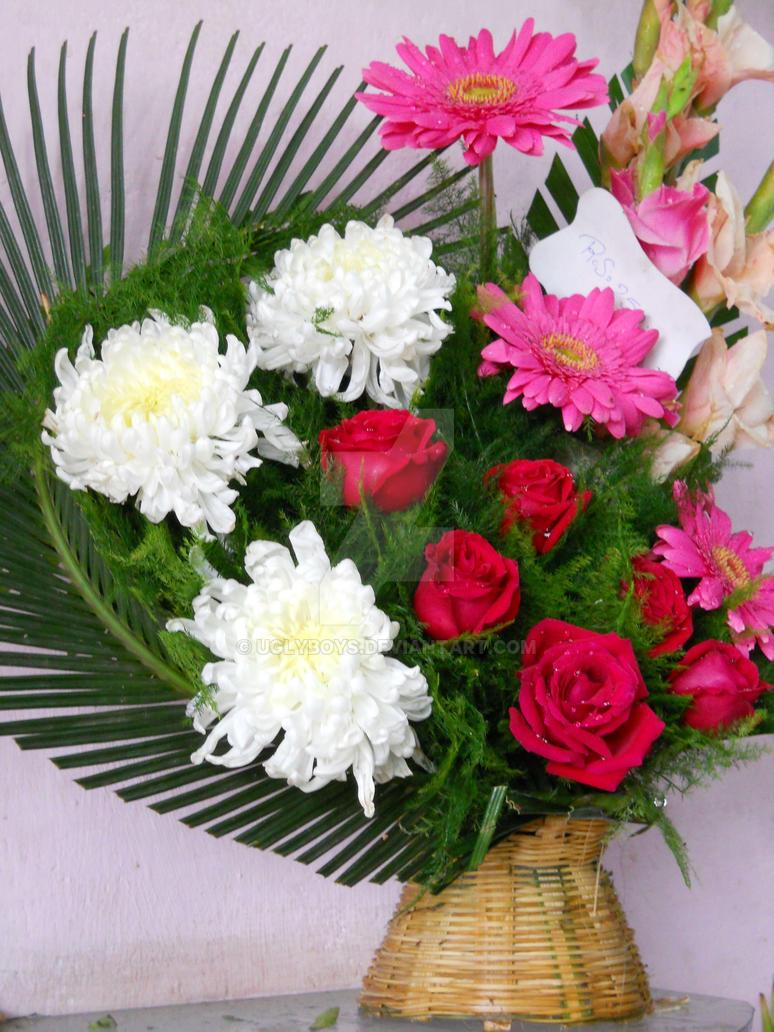Flower Bokeh Pictures Adsleaf