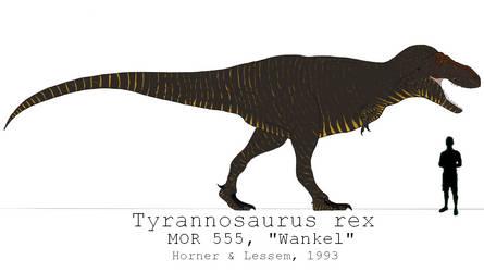 Tyrannosaurus rex (MOR 555) by Jurassiczilla