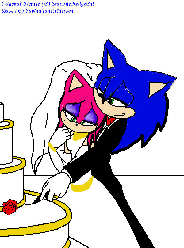 .:Amy+Sonic Marriage:. by shadowluver3000 on DeviantArtAmy And Sonic Wedding