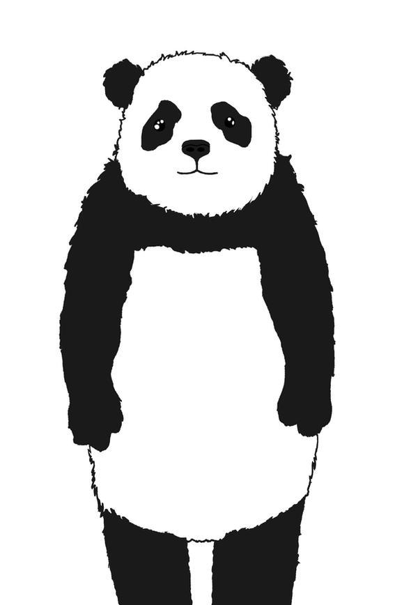 熊�尾巴是�A�A的